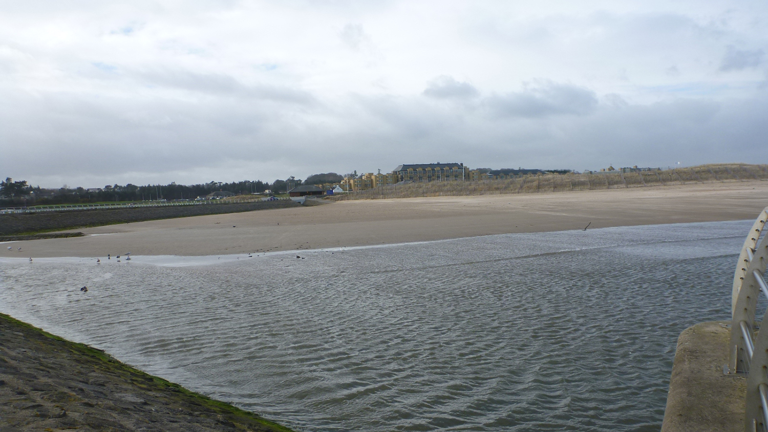 St Andrews West Sands Beach in Fife is an RNLI lifeguarded beach.